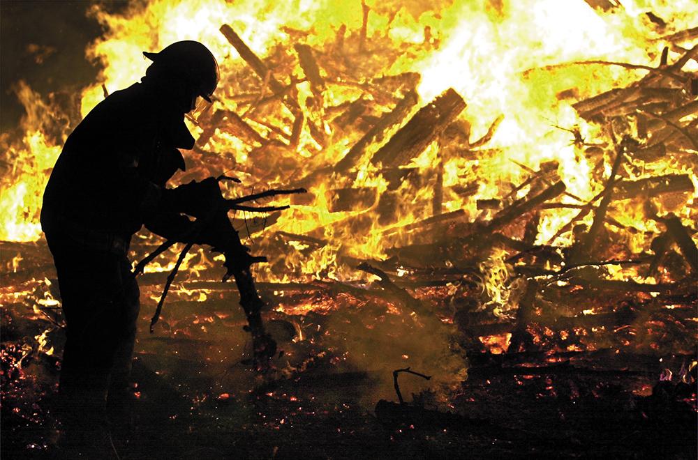 012002 tree burn